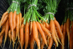 carrots_orange_bunches_20180320_2080398533