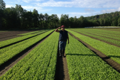 hector_in_a_field_of_greens_20180330_1639860198