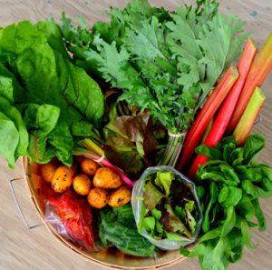 Spring_veggie_basket